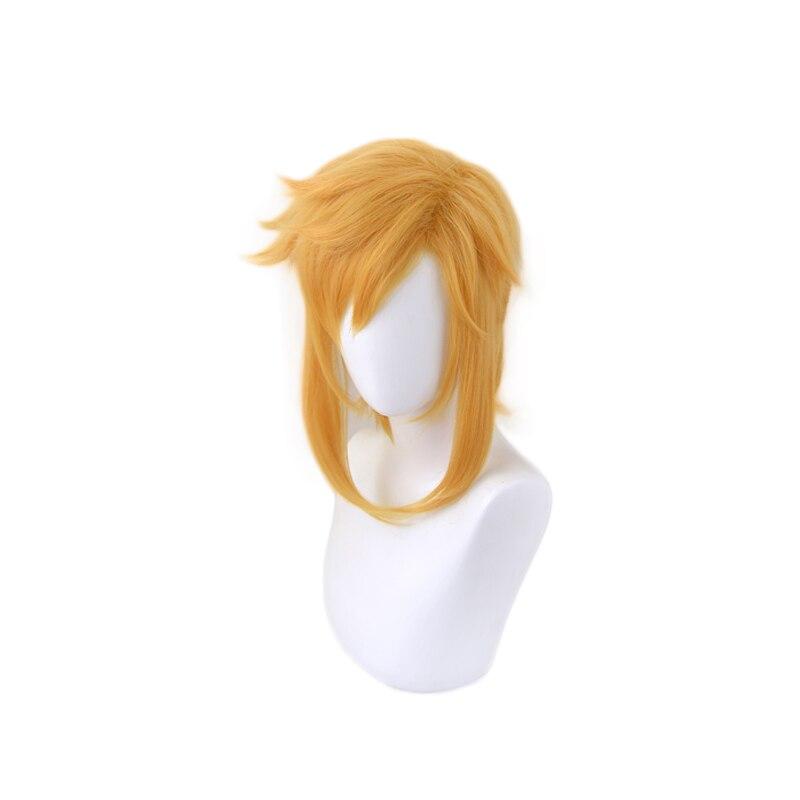 The Legend of Zelda Breath of the Wild Link Short Ponytail Wig Cosplay Costume Heat Resistant Synthetic Hair Men Women Wigs 2