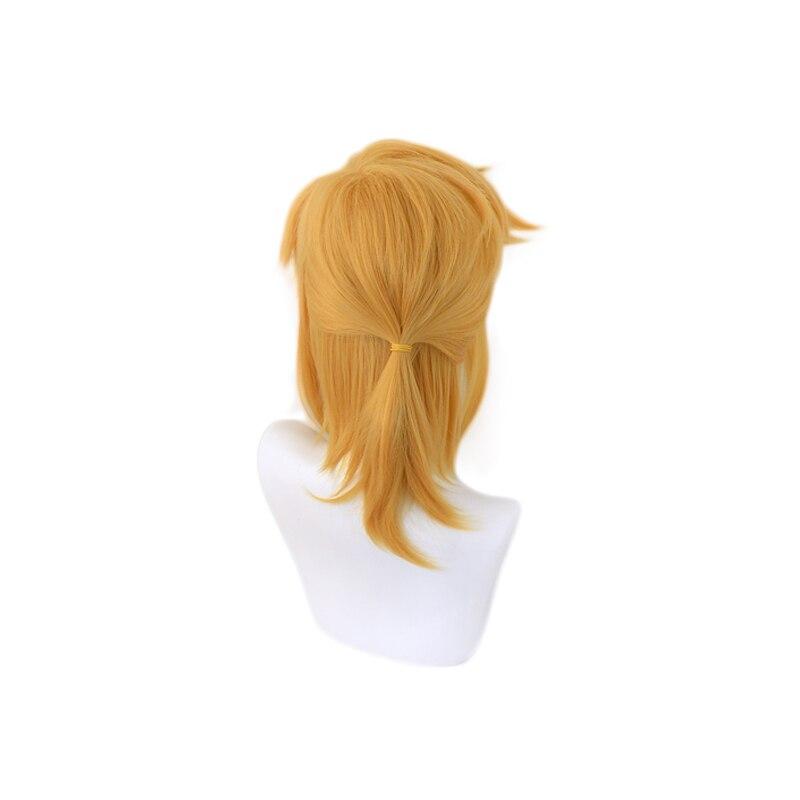 The Legend of Zelda Breath of the Wild Link Short Ponytail Wig Cosplay Costume Heat Resistant Synthetic Hair Men Women Wigs 5