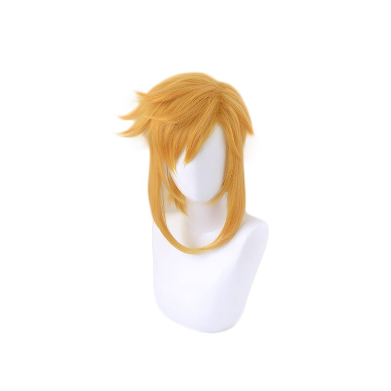 The Legend of Zelda Breath of the Wild Link Short Ponytail Wig Cosplay Costume Heat Resistant Synthetic Hair Men Women Wigs 3